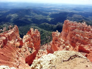 Mark Your Calendar: The Bryce 100