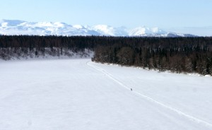 A runner is dwarfed by the Alaska landscape on the Iditarod Trail in 2012.