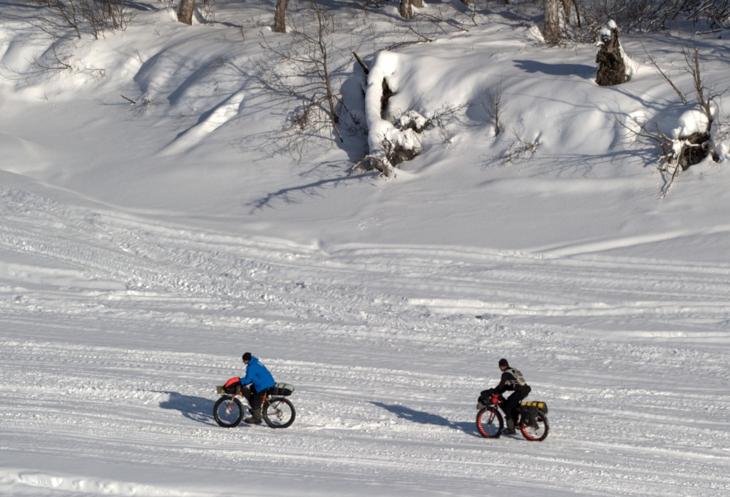 Cyclists pedal along the Iditarod Trail.